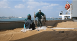 """Rientra in Kazakistan il grano duro """"non compatibile"""" bloccato a Pozzallo"""