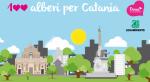 Catania, per fare l'albero ci vuole una raccolta fondi