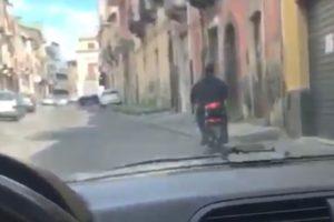 scooterista