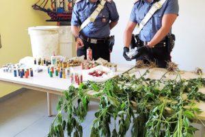 Maniace, in un terreno di c.da Dispensa trovata canapa indiana e 130 cartucce sotterrate: 47enne denunciato