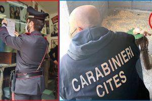 Catania: specie protette di poiana, cardellino e tartaruga in casa di una 55enne: denunciata